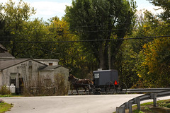 Amish Country I (Lawrence OP) Tags: pennsylvania amish dutch horse buggy
