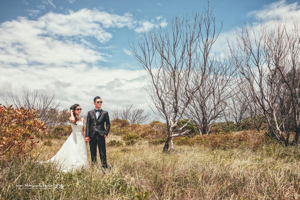 婚攝英聖-婚禮記錄-婚紗攝影-30054183062 8800b8790b b