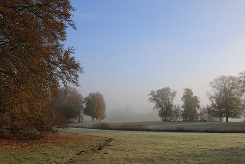 Morning mist and frost.