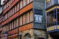 Rennes in colors (GreenEyes Photography) Tags: rennes greeneyesphotography bird oiseau batiment city ville vilaine eau water banc bleu couleur noir et blanc sepia love couple story