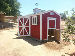 8x15 Premier Ranch-ChickenCoop-2 (TUFF SHED) Tags: premier chicken coop cupola