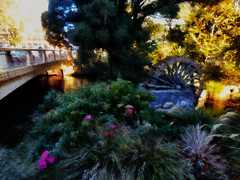 A Warm Light and a Waterwheel (Steve Taylor (Photography)) Tags: waterwheel art digital architecture bridge contrast newzealand nz southisland canterbury christchurch cbd city flora flower grass tree glow silhouette autumn morning sunny sunshine