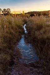 New Mexico ([ raymond ]) Tags: americansouthwest desert galisteopreserve landscape newmexico outdoors southwest img9540 horizon sunset water stream