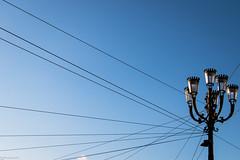 Turin/Torino #7 (fhenkemeyer) Tags: lamps sky blue torino turin