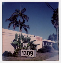 1309 (tobysx70) Tags: the impossible project tip polaroid slr680 frankenroid sx70 door rollers film for 600 type cameras instant impossaroid 1309 west valencia drive fullerton orange county california ca number sign bluesky palms palm tree plants vanishing point light leak toby hancock photography