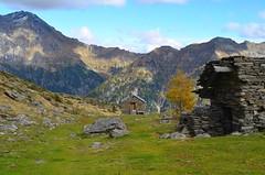 Alpe di Cava (dino_x) Tags: panorama landscape alpi alps switzerland montagna allaperto nature paesaggio roccia autumn autunno