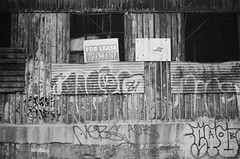 Bedford Stuyvesant, Brooklyn (slo:motion) Tags: brooklyn 718 kingscounty nyc newyorkcity newyork bw sw tags tag abandoned bedstuy bedfordstuyvesant forlease gentrification