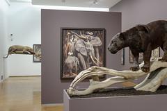 Norbertine Bresslern-Roth @ Neue Galerie Graz