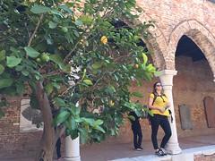 Lemons & Lisette (Kennisland) Tags: teamuitje venice venezia veneto italy it kl kennisland veneti