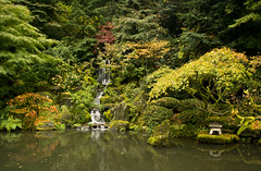Fall Zen *Exp* (gwendolyn.allsop) Tags: fall autumn garden japanese maples waterfal pond oregon portland d5200