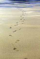 Voyage vers l'inconnu (d.calabrese71) Tags: zumaia espagne plage mer pas pied traces sable extrieur