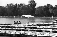 2014-20-36 Madrid_F ONLY PERSONAL COMMENTS. NO LOGOS. THANK YO FOR YOUR UNDERSTANDING.© RESPECT the copyright. (YoLeenders) Tags: madridespaña parquedelretiro rentalsmallboats alquilerbarcos atmósfera atmophere fotografiacallejera monochrome analogblackandwhite ilforddelta100asa developerhc110131b nikoncoolscan5000ed leicam6ttl085 rangefinder summicronc12040mm streetphotography
