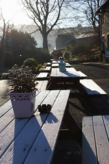 Frosty morning (dominiquita52) Tags: frost gel blanc white benches bancs barley pendleinn pub lancashire
