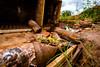IMG_8462 (caastro) Tags: mariana minasgerais desastre barragemdofundão bentorodrigues paracatu gesteira samarco barralonga
