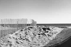 Fence Shadows (uselessbay) Tags: 2016 beach ilfordpan100 middletown nikon nikond700 places rhodeisland secondbeach uselessbayphotography williamtalley blackandwhite d700 fullframe landscapes uselessbay water