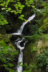 Stock Ghyll Force (II) (Ian Smith (Studio72)) Tags: canon60d canon1585mm uk england cumbria lakedistrict ambleside stockghyllforce waterfall fall water nature natural river green polariser cpl flowing rushing wet moss leaves studio72