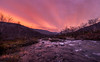 It's about to start! (A. Stavrovich) Tags: khibiny river spring autumn sunrise sun sunrays clouds trees water reflections bushes nature panorama panoramic canon5dmarkii canonef1740mmf4l canon outdoor scenery beautiful pink red orange yellow wildlife wild mountains morning dawn russia 2016