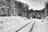8 mile crossing / south (twurdemann) Tags: 03ndsoftgrad 8mile algomacentralrailway blackandwhite canadiannationalrailway fifthline fujixt1 gnd1s hiawathahighlands landscape leeseven5 mile8 nature niksilverefex northernontario ontario railroad railway saultstemarie snow train traintracks trees winter xf55200mm