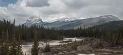 Castle Mountain (Si Craggs) Tags: castlemountain banff rockies canada