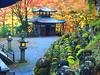Otagi nenbutsu temple (brisa estelar) Tags: otagi temple buddhism statues kyoto lantern maple leaves autumn green traditional japan travel asia outdoor