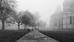 A quiet moment (away from the Xmas shopping) (davepsemmens) Tags: york fog mist minster yorkminster path