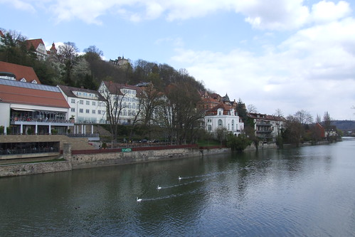 Left coast of Neckar River, 08.04.2012.