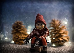 Winterwonderland Christmas (heike_hechelmann) Tags: christmas winter sony a7ii advent frost ice kids kinder bokeh revuenon 14 55