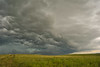 Summer Storm Over the Kansas Plains, 1,2,3 (thefisch1) Tags: storm clouds threatening turbulence pasture wind cloud verigated kansas uplift thermal rain