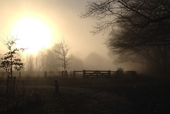 Just one beautiful foggy winter day (Frank ) Tags: fog winter snow frost year white dim europe limburg frankvandongen iphone apple mac ima ibook pro sunset topf25 topf50 topf100 topf200 landscape scenery naturalbeauty holland netherlands meadow weight weird serene
