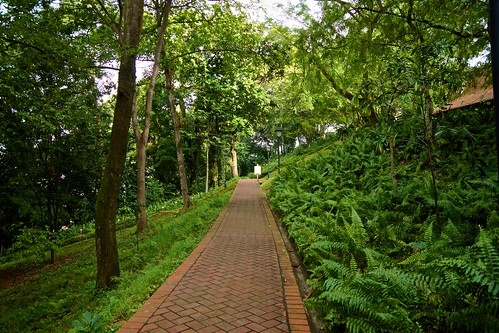 Path in Fort Canning Park, Singapore