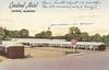 Cardinal Motel - Fayette, Alabama (The Cardboard America Archives) Tags: vintage motel postcard alabama xmarksthespot