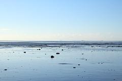 wenn sich das Meer zurückzieht um auszuruhen, laufen wir dem Wasser hinterher (raumoberbayern) Tags: hallig gröde ebbe sandbank sand nordsee northsea robbbilder wattenmeer watt
