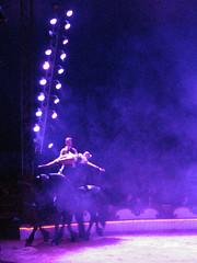 IMG_1349 (zaqina) Tags: wien circus belly fries paard