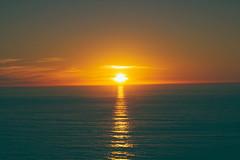 Sunset (zoobumz) Tags: ocean sunset green beach sunshine digital forest fun pacific forrest bigsur sunny pch flickriosapp:filter=nofilter