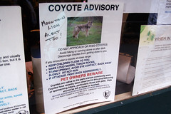 "Coyote Advisory sign • <a style=""font-size:0.8em;"" href=""http://www.flickr.com/photos/34843984@N07/15360819370/"" target=""_blank"">View on Flickr</a>"