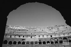 (Chaoqi Xu) Tags: city travel bw italy white black rome roma canon photography eos photo italia foto monumento coliseum marble fotografia    bianco nero viaggio    xu citt colosseo   beni 2014  marmo       culturali 600d chaoqi