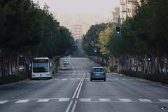 Avda. Hacia el Mediterrneo. (elojeador) Tags: bus avenida calle coche rbol neblina asfalto piso autobs calzada lnea pasodepeatones pasocebra elojeador pasodepegatinas avdadelmediterrneo
