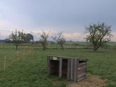 wuthenow-sonnenlandhof_fz50_1160139 (Torben*) Tags: trees lumix meadow wiese panasonic bume brandenburg fz50 neuruppin rawtherapee wuthenow sonnenlandhof