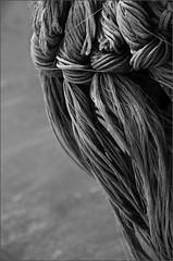 Ropes (DaisyDeeM) Tags: blackandwhite texture boats ropes