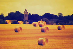 LDF - Muneville sur Mer (card2) - maandag 4 augustus 2014 (GeertMania) Tags: landscape cards ldf moocard fotojg ldfblog 201408