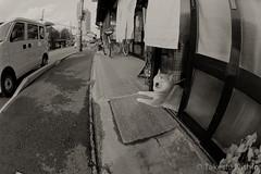 dazzling (Takeshi Nishio) Tags: uv   ilfordfp4plus nikonfm3a   16mmfisheye  ei125 spd1120deg7min filmno796