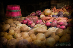 SPUDS AND MORE {Explore front page} (Peeblespair) Tags: vegetables potatoes market earth roots onions produce farmstand bushelbasket peeblespair peeblespairphotography