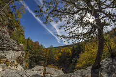 Minnewaska Fall (gimmeocean) Tags: ny newyork fisheye fallfoliage flare 8mm kerhonkson minnewaskastatepark minnewaskastateparkpreserve bower8mmfisheye