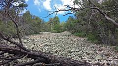 Arizona Talus (David A Jahn) Tags: arizona mountain rocks samsung galaxy s4 talus montane
