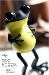 apo frogs 3 (amonstyle) Tags: toy amon ttf amonlin apofrogs