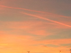 The end of summer (Indra Kupferschmid) Tags: sunset orange himmel markt saar saarbrcken abendrot