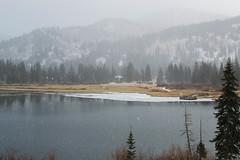 Chilly (Jake Allison) Tags: trees lake snow cold ice utah dock canyon saltlakecity silverlake bigcottonwoodcanyon