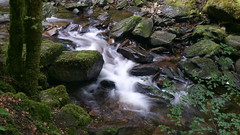 Owengarriff River (Stefan Jrgensen) Tags: park county ireland river waterfall sony kerry ring national killarney killarneynationalpark countykerry ringofkerry 2014 torc torcwaterfall a700 owengarriff dslra700 owengarriffriver
