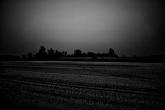#7944 (UBU ♛) Tags: blancoynegro blackwhite blues dreams biancoenero blunotte blutristezza unamusicaintesta landscapeinblues bluubu luciombreepiccolicristalli ©ubu