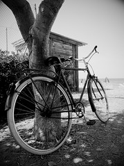 bicycle (claudio.buttice) Tags: summer bike bicycle cycling bici sicily sicilia raggi ruota ruote bicidapasseggio